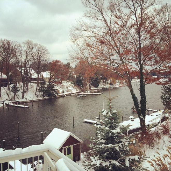 Snowy bayou
